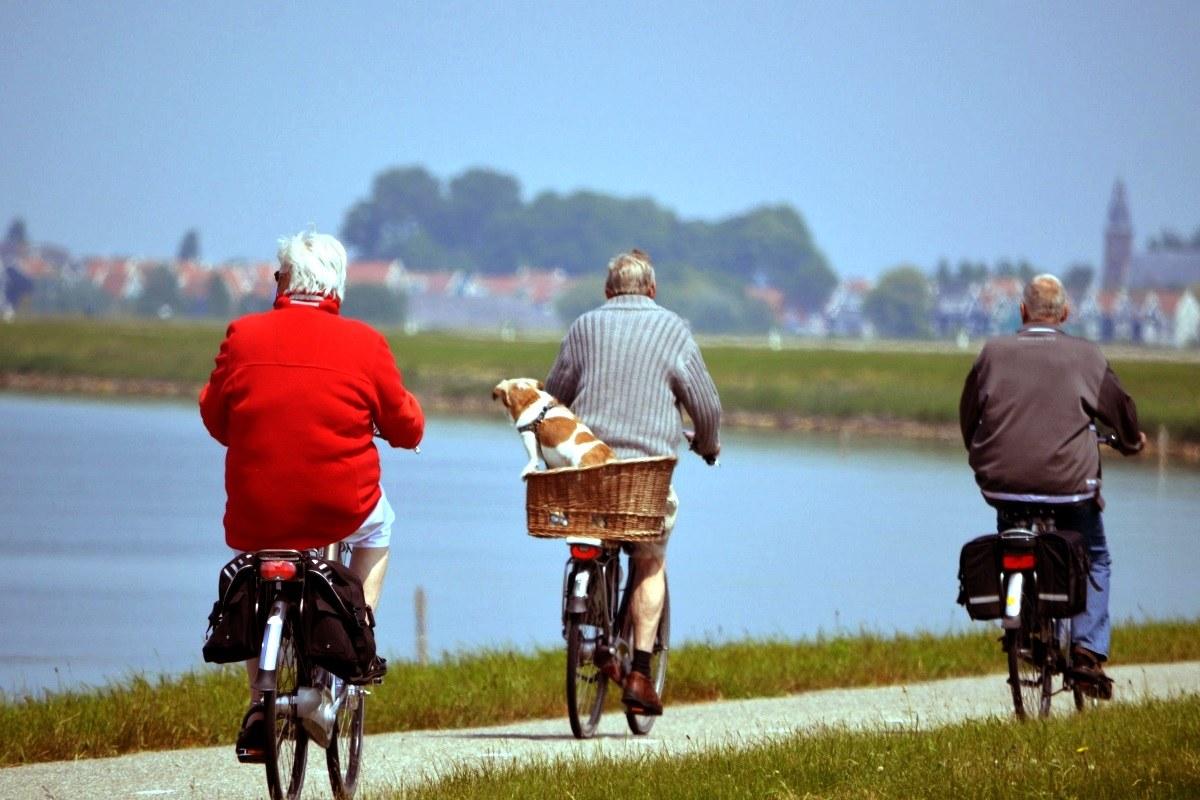 Regularny ruch to dłuższe życie